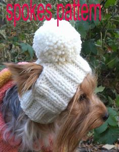 Hat Dog PATTERN, will teach you how to make delicious hats for pets. Pet dog pattern Average adult size of a - Salvabrani Havanese Puppies, Yorkies, Yorkie Clothes, Pet Clothes, Puppy Hats, Knitted Hats, Crochet Hats, Dog Clothes Patterns, Dog Pattern