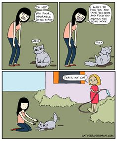 Make Sure To Double Check Before You Pick Up A Stray Cat! #Cats #Comedy #CatVersusHuman