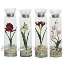 this is something different , simple, and probably very cheap bc you only need one flower per glass... you could even put several on a table tiered or something on blocks or something or maybe different lengths of jars..Silk Flowers, Silk Flower Arrangements | The Silk Flower Store