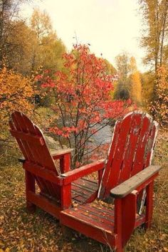 Autumn Outdoor Chairs - my mom would love this picture