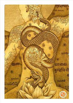 (disambiguation) Kundalini is a spiritual energy in yogic philosophy. Kundalini may also refer to: Yoga Kundalini, Chakra Meditation, Tatouage Kundalini, Kundalini Tattoo, Chakra Tattoo, Yoga Kunst, Magia Elemental, Tantra Art, Dragon Rise