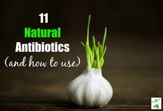 How to SAFELY Use the 11 Best Natural Antibiotics