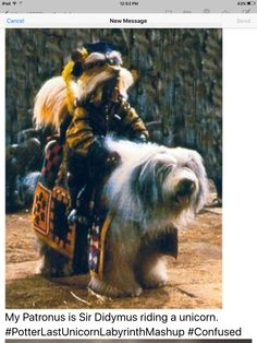 My Patronus is Sir Didymus riding a unicorn. #PotterLastUnicornLabyrinthMashup #Confused #Sigh