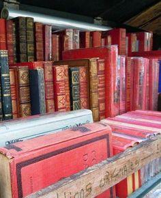Antiquarian book at the Seine in Paris.
