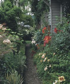 A Tale of Two Side Yards.  I love the duality of this garden.