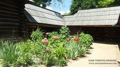Muzeul Satului Plants, Pictures, Flora, Plant, Planting