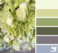 Spring Tones - http://design-seeds.com/home/entry/spring-tones10