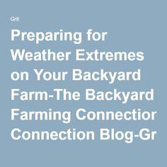 Homestead Farm, Farming | Real World Survivor | Pinterest | Homesteads,  Farming And Potager Garden