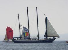 2011코리아컵, 북부 해수욕장 앞 바다에서 움직이는 요트 모습