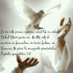 Good Night Blessings, Bible Verses, Study, God, Quotes, Forget, Verses, Dios, Quotations