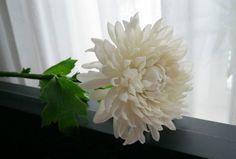 Хризантемы Рецепты ХФ. МК  сирени, сакуры