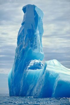 Blue Iceberg, Antarctica by Frans Lanting