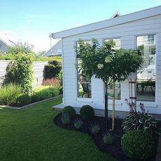 God förmiddag! Här håller vi på att packa för en liten tripp. Vill tacka er alla… Outdoor Projects, Home Projects, Outdoor Decor, Miami Houses, Family House Plans, Backyard, Patio, Garden Styles, Beautiful Gardens
