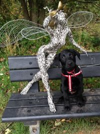 Inspired by an inexplicable real life encounter, the fairies are painstakingly created from galvanised and stainless steel wire, by local artist Robin Wight. www.fantasywire.co.uk.