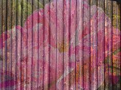 """'Stoffdesign """"bemalte Bretterwand 150""""' von Rudolf Büttner bei artflakes.com als Poster oder Kunstdruck $16.63"""