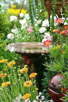 Beautiful birdbath surrounded by flowers.
