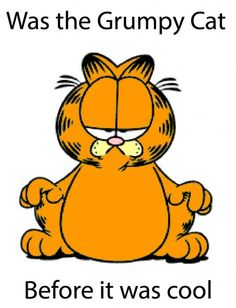 The Original Grumpy Cat, I LOVE GARFIELD, ALOT OF MY FRIENDS ON FB HAS COLORED IN MY COLORING BOOKS WHEN WE WERE LITTLE LOL