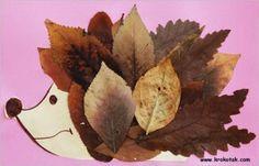 Herfst/egeltje met bladeren