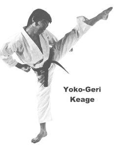 Técnicas de Karate do