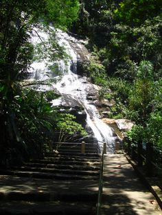 """""""Cascatinha Taunay"""" - the Taunay waterfall in our Tijuca national park tour Cafe Rio, Singapore Botanic Gardens, National Park Tours, City Limits, Waterfalls, Botanical Gardens, Worlds Largest, Country Roads, In This Moment"""