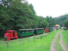 felsőtárkány forest railway