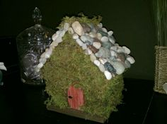 Fairy house made from moss, rocks, and a wooden bird house...made it for my daughters room