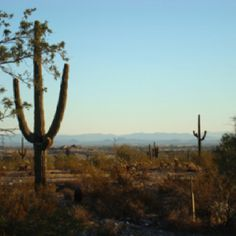 Moving to Peoria, Az in the future.