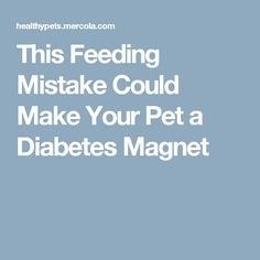 This Feeding Mistake Could Make Your Pet a  Diabetes Magnet