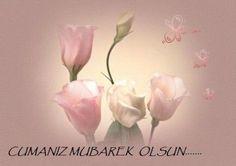 #cuma #hayırlıcumlar #islamtt #cumamesajları Cuma'dır gönlüme huzur, cuma'dır evlere huzur. Cumanız mübarek olsun... Yüce Allah mübarek Cuma-ı şerif hürmetine hayatın şereflisini, rızkın bereketlisini, vücudun sıhhatlisini, ahlakın faziletlisini, evladın edeplisini nasip ve müesser eylesin. Bazı müminler cennete hasret yaşar. Bazı müminler de …