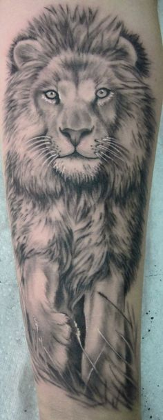 Walking lion tattoo on arm