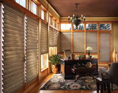 Hunter Douglas Vignette Tiered Architella window shadings