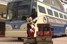 Ask a Disney Expert: Weddings, Disney Dining Plan, and Car Rentals