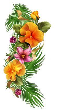 0_c3230_16544f8d_orig (498×800) Hawaiian Flowers, Hibiscus Flowers, Tropical Flowers, Tropical Art, Flower Images, Flower Art, Tiare Tahiti, Stained Glass Designs, Diy Arts And Crafts