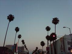 Sunset on Sunset Boulevard.