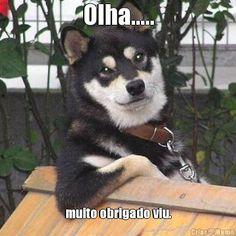 meme-cachorro-obrigado