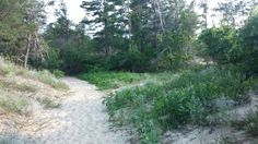 Platte River Campground trail to Lake Michigan.