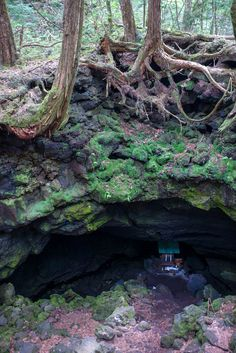 The ice caves of Aokigahara Forest (JP) - the most amazing part of my trip. :D
