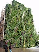 Vertical gardens!