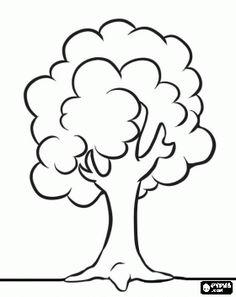 Maple Tree Coloring Page Maple tree Worksheets and Kindergarten