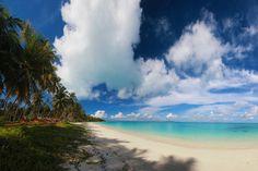 The long coastline of Palambak Island is still pristine and beautiful.  The islands of Palambak Besar and Palambak Kecil...