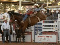 """Taylor Price is pursuing the bareback riding rookie of the year award and he helped his cause greatly at the June 26-29 West of the Pecos Rodeo in Pecos, Texas, by riding the legendary Carr Pro Rodeo horse Dirty Jacket for 88 points and the championship. """"I've been waiting three years for the chance to ride that horse,"""" said the Huntsville, Texas, cowboy. More: http://www.prorodeo.com/Story.aspx?xu=5213    #RodeoChat"""