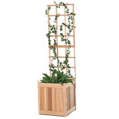 All Things Cedar 18-in W X 60-in H Sanded Panel Garden Trellis Pl20u-set