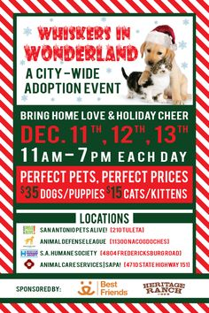 Whiskers in Wonderland - city wide adoption event.