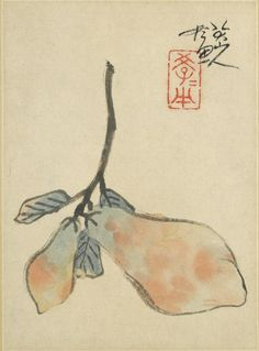 """Chinese, Qing dynasty, 1644–1912 Zhu Da, 1626–1705 Place made: China Quince (Mugua), 1690 Album leaf mounted as hanging scroll; ink and color on paper Painting: 20 x 14.6 cm. (7 7/8 x 5 3/4 in.) Mount: 116.8 x 33 cm. (46 x 13 in.) """"Bada Shanren hua"""" 八大山人畫 (Painted by Bada Shanren)"""