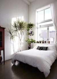 Дизайнерская мебель | Свет | Декор