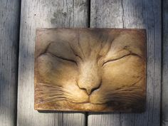 A portrait of Max, sleeping. Relief sculpture of a cat at rest.  The subtle ( and sometimes not so subtle!) expressions of these animals are