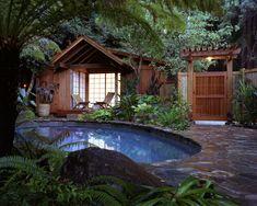 Tropical Backyard Oasis with Small Pool Patio Tropical, Tropical Pool Landscaping, Backyard Pool Designs, Landscaping Ideas, Backyard Ideas, Tropical Design, Backyard Landscaping, Backyard Pools, Tropical Homes