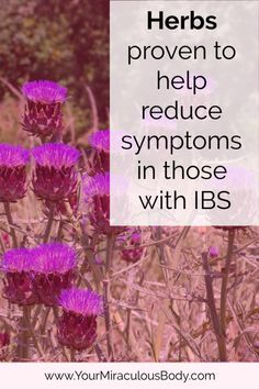Herbs have been used for centuries. Various herbal remedies have been proven effective in the medical studies. Herbs for IBS allow the body to heal itself. Natural Treatments, Anxiety Tips, Stress And Anxiety, Herbal Remedies, Natural Remedies, Ibs Symptoms, Womens Health Care, Ibs Diet