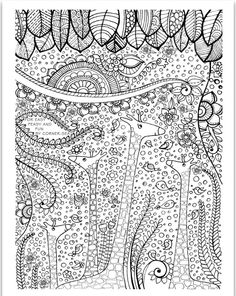 To Print This Free Coloring Page Adult Africa Giraffes