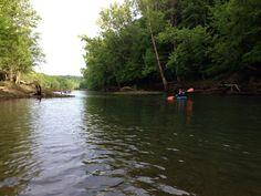 Cumberland river KY, 2013